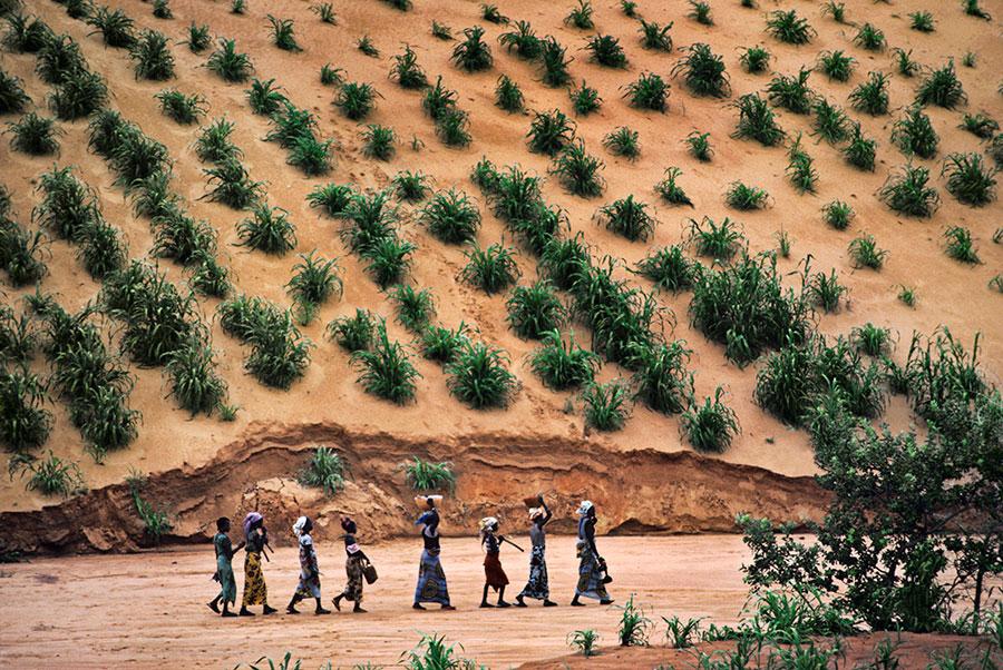 kisuaonline :      Niger