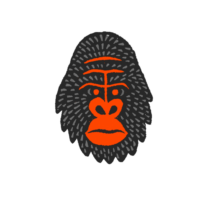 illustration_monkey-head-06.jpg