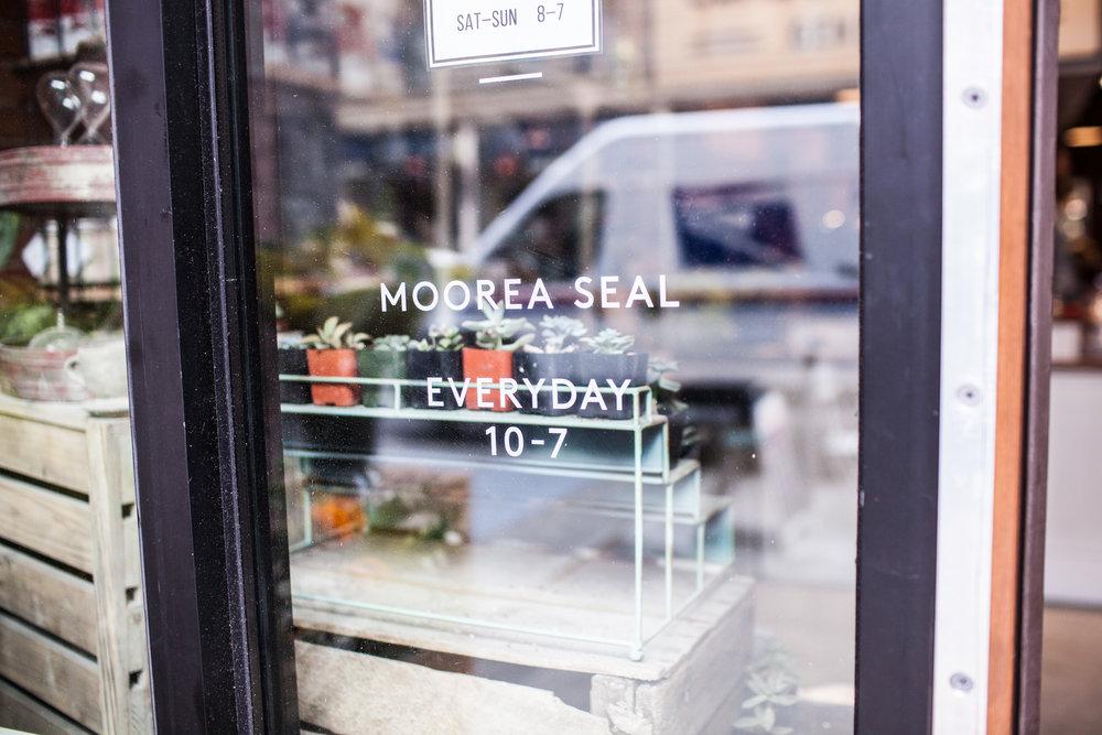 MooreaSeal127.jpg