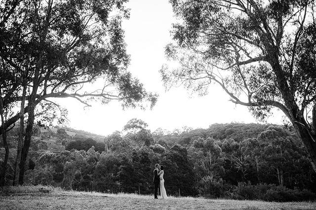 Shelley & Dave  #weddingadventures #momentsovermountains #heyheyhellomay #australianwedding #engaged #wedding #love #instawedding #bridetobe #weddinginspo #junebugweddings #togetherjournal #adelaidewedding #adelaideweddingphotography #adelaidewedding #destinationweddingphotographers #vscofilm