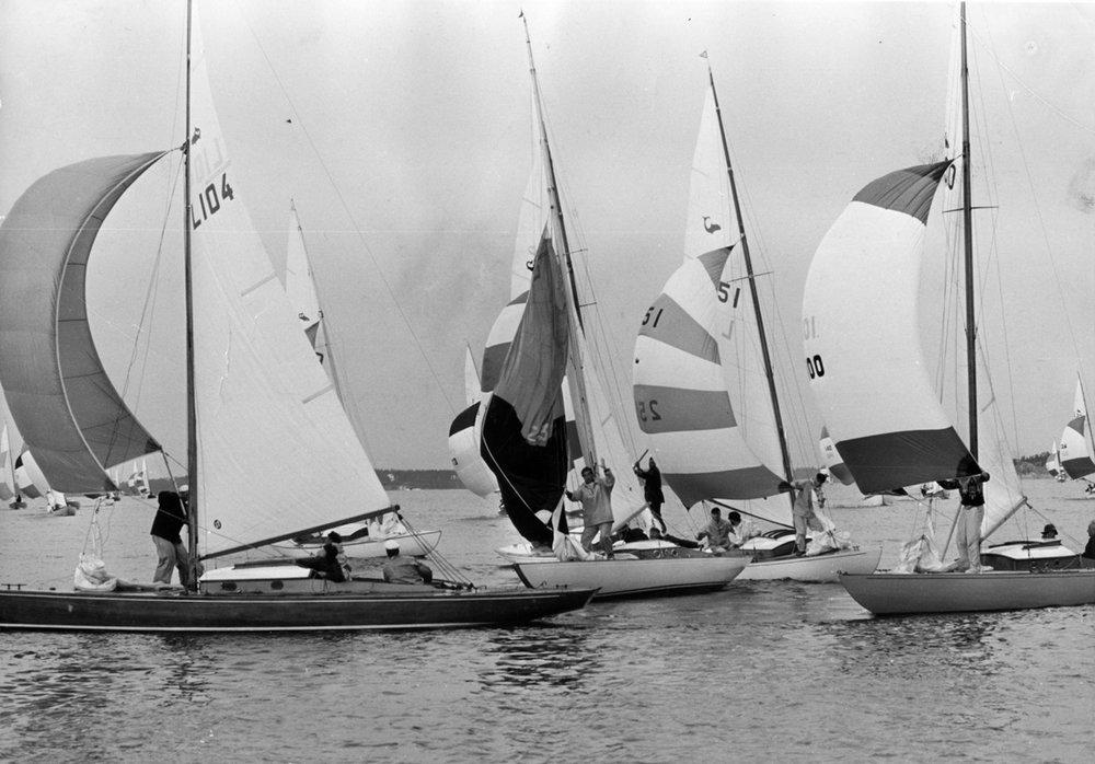 ....Sharks racing in 1965, photo: ASS..Hait kilparadalla vuonna 1965. kuva: ASS....