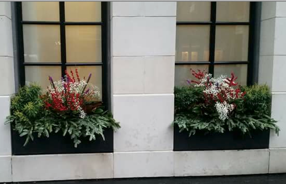 restaurant planter boxes, winter planter box decorations, winter plantings, winter garden design, christmas decorations, home decoration, winter home decorations