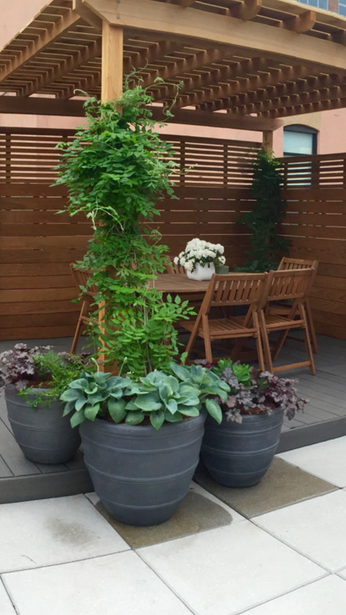 Nyc Landscape Design And Construction, Drip Irrigation, Outdoor