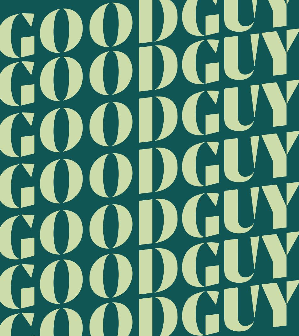 Mr Good Guy