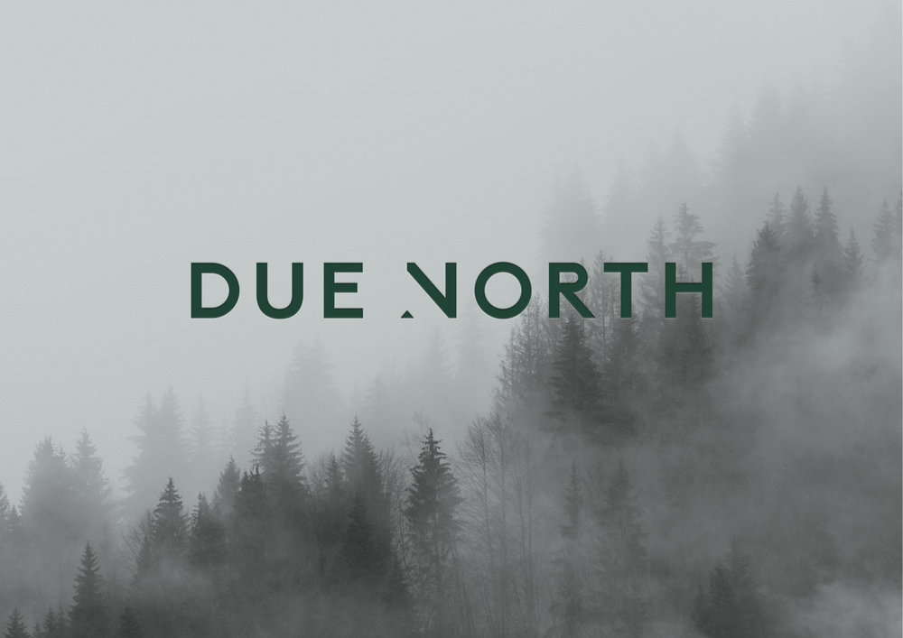DUE NORTH