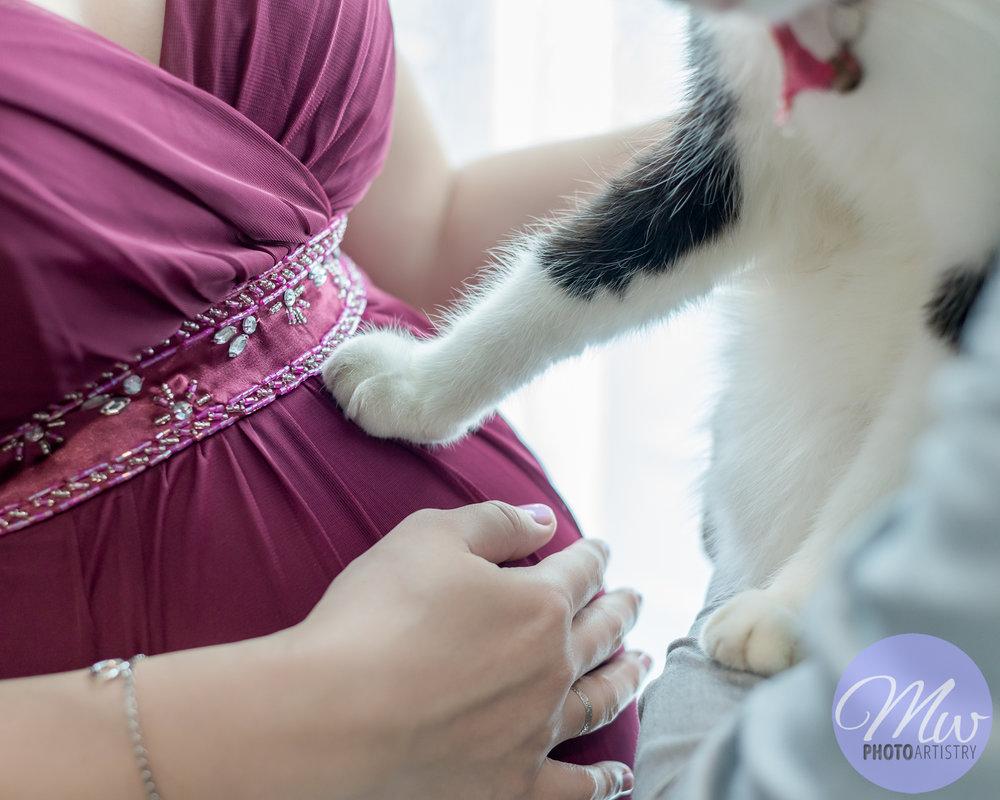 Kuala Lumpur Kuching Malaysia Maternity Photographer Photo 29.jpg