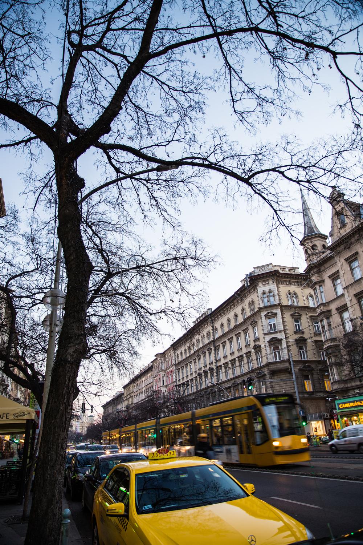 11_25_2015_Budapest_Day_1-2952.jpg