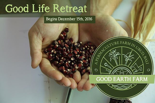 Looking for a way to dig your hands into the dirt (literally) and learn more about sustainable living?  Our 2nd Good Life Retreat starts December 15th, 2016 and we are excited to be offering a space where learning more about your environment, community and creating awareness about sustainable solutions are encouraged.  No previous experience with permaculture or farming required.  Come and join us for 6 days of learning about permaculture, balancing daily yoga classes and relaxing time at @nayaubud resort.  Early bird pricing ends October 15th!  Reserve your spot by clicking the link in our profile or by messaging us at:  goodearthfarmbali@gmail.com  #goodliferetreat #goodearthfarmbali