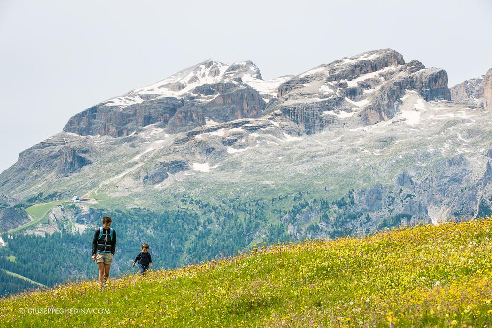 Sullo sfondo il Gruppo del Sella_ a sinistra la cima del Piz Boè _ foto  @giuseppeghedina.com