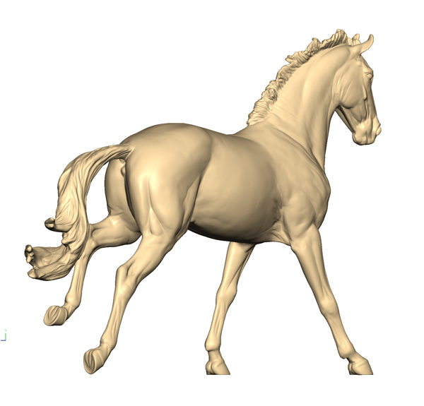 3D Scan of the Irish Sports Horse (Rear)