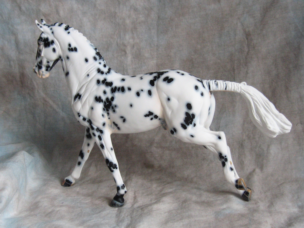 Confetti Fox by Frances Stevens. A customised Copperfox Irish Sports Horse, with his original mane and tail removed and resculpted.