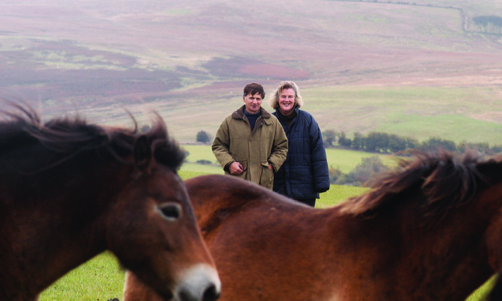 Chris and Victoria Eveleigh and their Exmoor Ponies