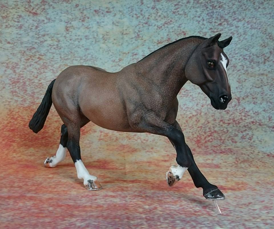"""True Brit"" Copperfox Welsh Cob Custom by Karon Grieve of Dream Acres."