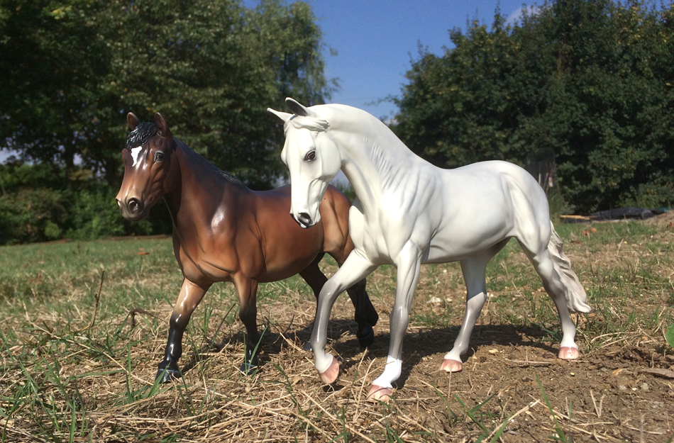 special edition copperfox model horses for our autumn tour. crumpet (left) and lakeview prince (right)
