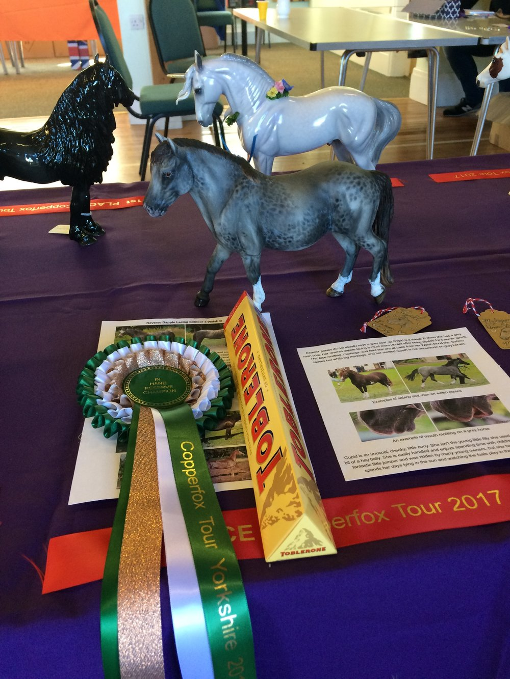 In-Hand Reserve Champion