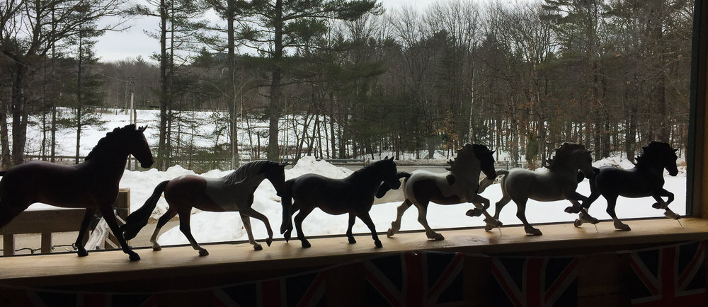 What a setting. I think the Herd are eyeing up the chance to play in the snow!!