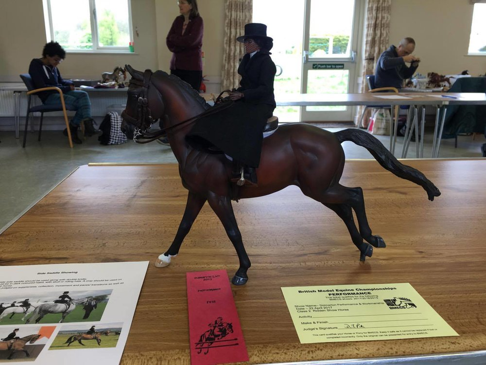 Custom Copperfox Irish Sports Horse customised by Harriotte placed First in Ridden Horse