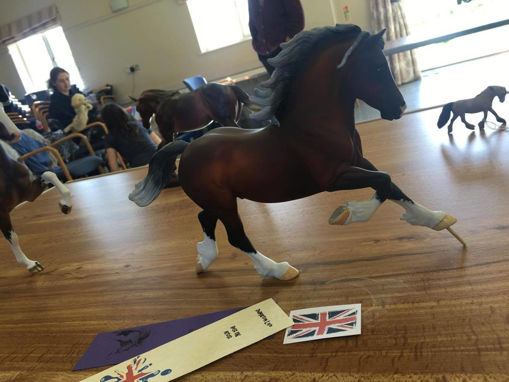 Copperfox Custom Welsh Cob customised by Harriotte placed 5th in the Other Colour Workmanship Class