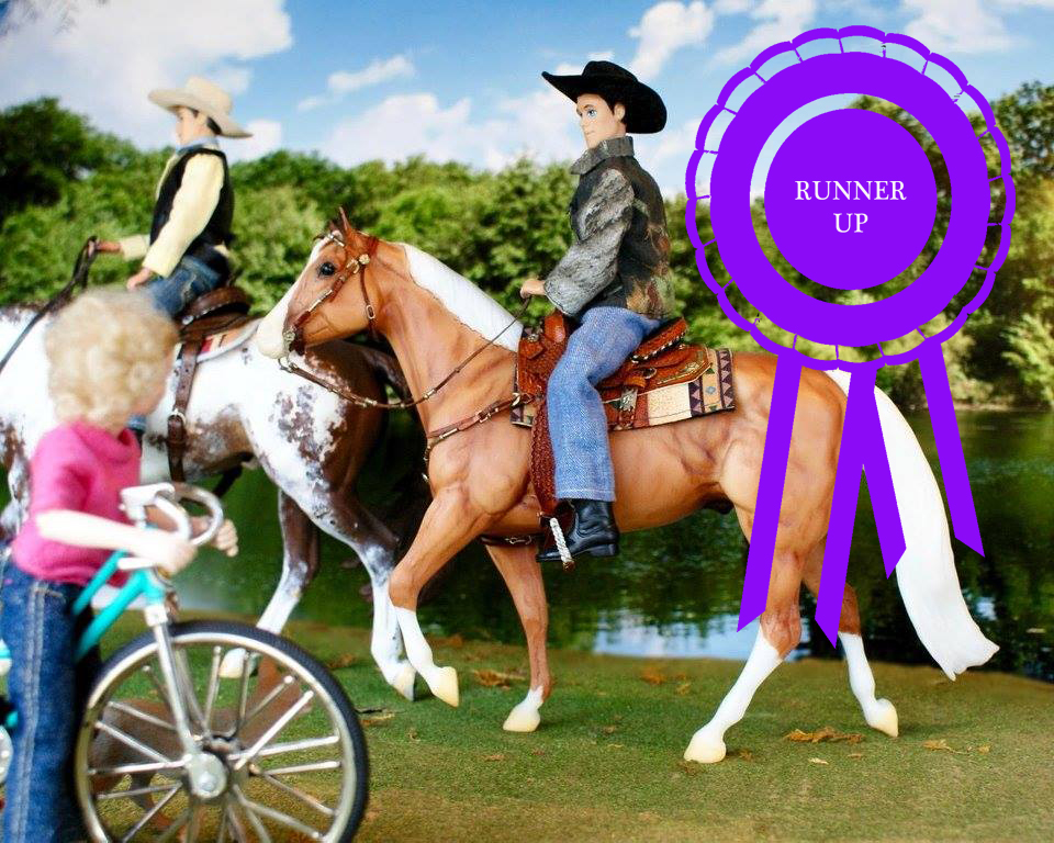 RUNNER UP IN THE COPPERFOX APRIL PHOTO SHOW