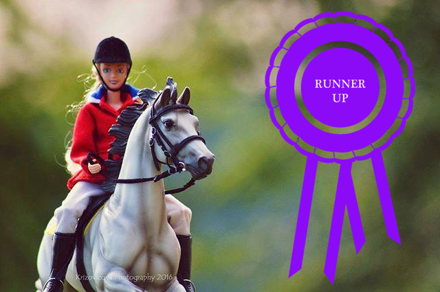RUNNER UP IN COPPERFOX APRIL PHOTO SHOW