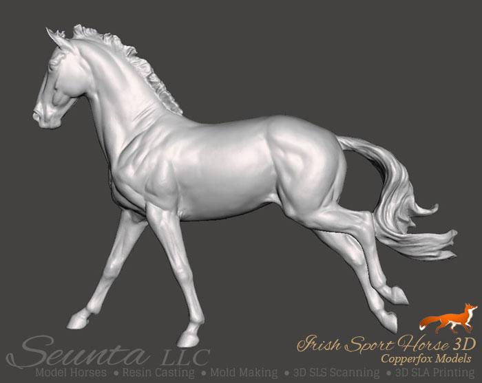 sport-horse.jpg