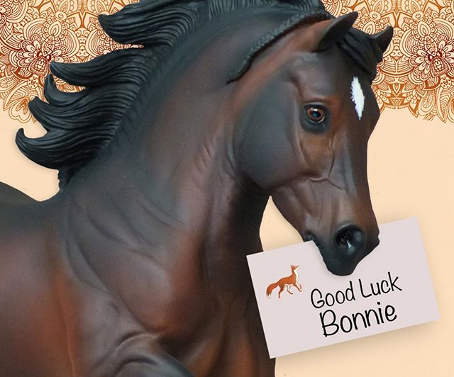We would like to wish Good Luck to Bonnie Valentine who is attending the model horse festivities in Kentucky this week our Copperfox Model Horse Ambassador. Your find Bonnie, together with her Copperfox Herd, at the CHIN in Room 104. It's going to be weekend of horses at this event! Have a great time! We can't wait to hear all about it!! #copperfoxambassadors #copperfoxmodels