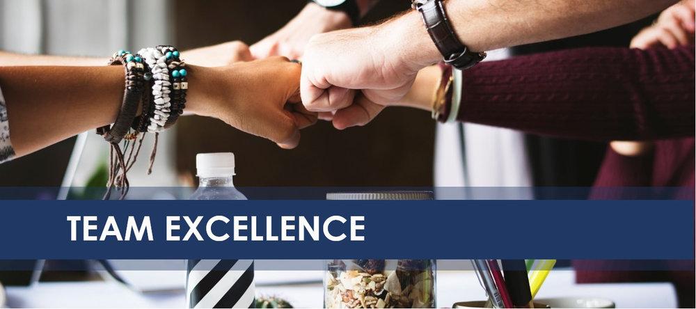 team-excellence-banner-jpeg_1.jpg