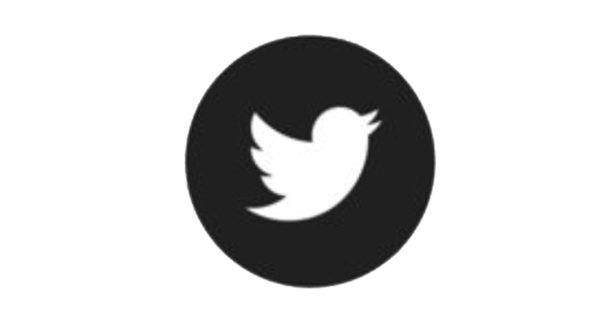 Twitter Horizontal.png