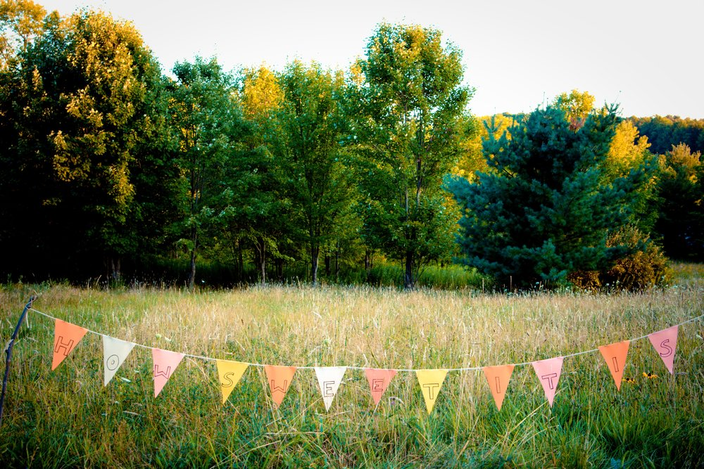 homemade bunting