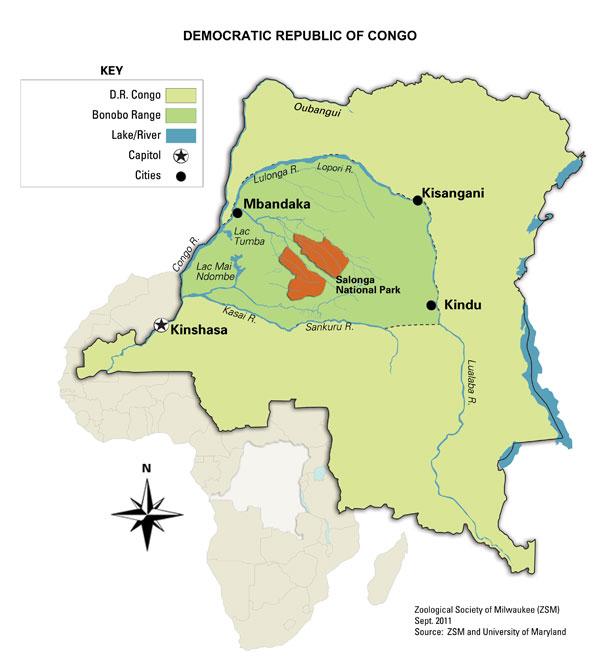 Salonga-Nationalpark: Weltweit zweitgrösstes Regenwaldgebiet             © Karte by ZSM