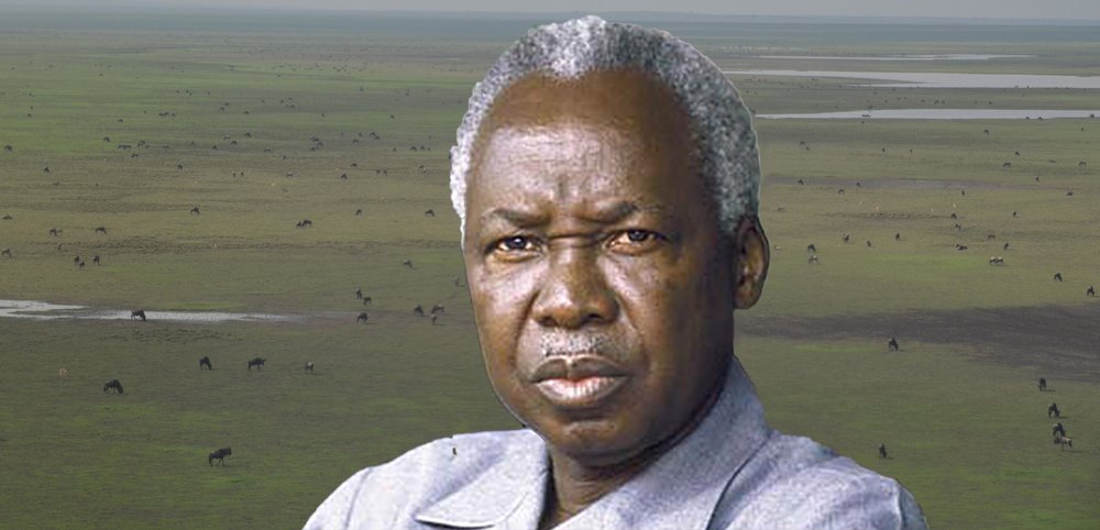 «Umweltpräsident» Nyerere