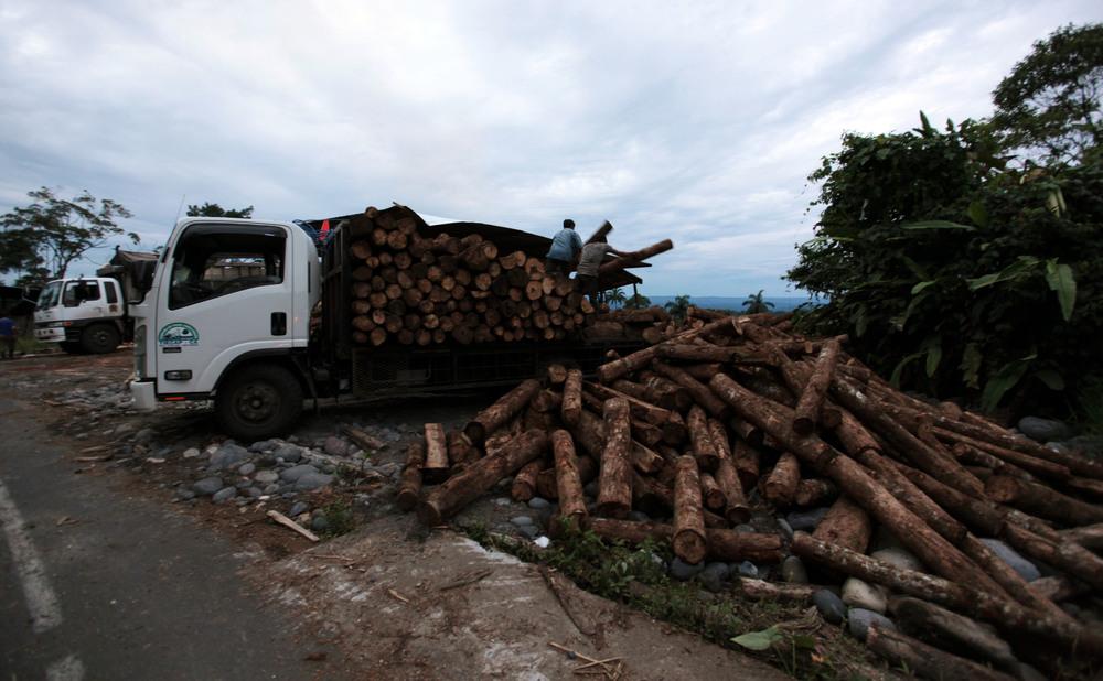 2015_6_27_Ecuador_Canelos_Logging.jpg