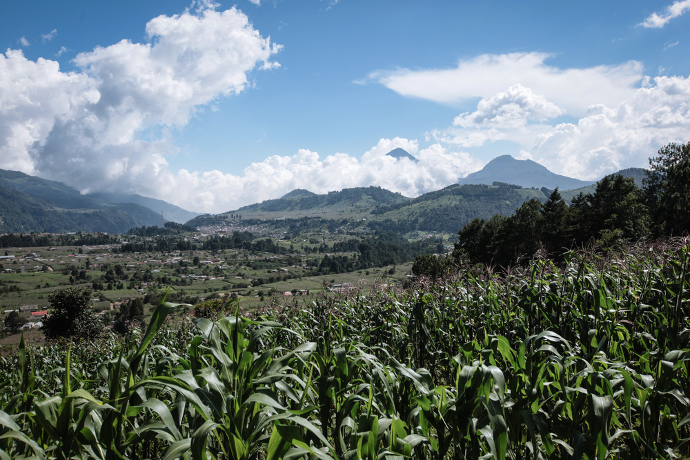 2015_08_05_beautifulmountain_cornfields_img_5144jpg_22529541988_o.jpg