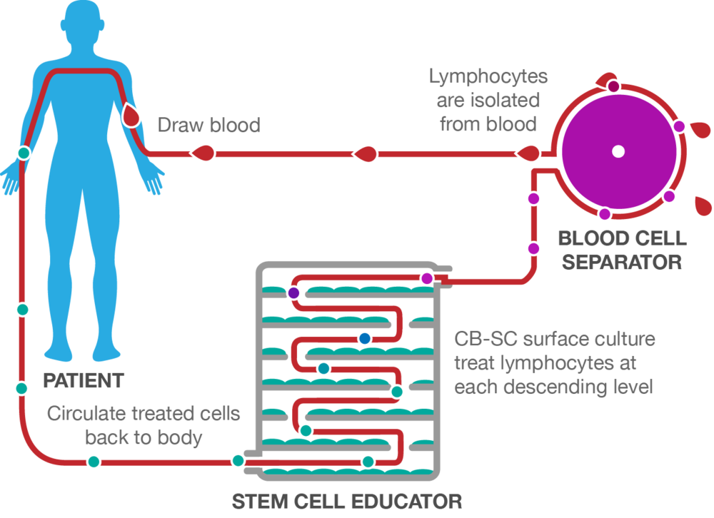 Stem Cell Educator Therapy Process
