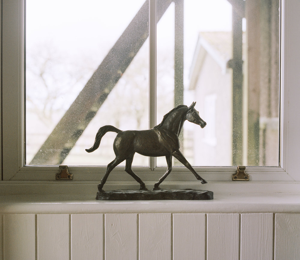 A statue of a horse in Philip Heards house.