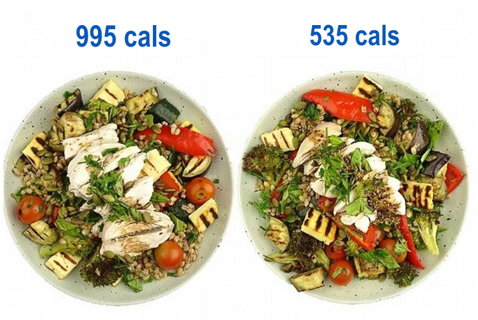 Calorie Counting.png