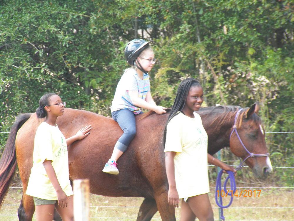 Farm CAMP!  For rising 3rd - 5th Grades
