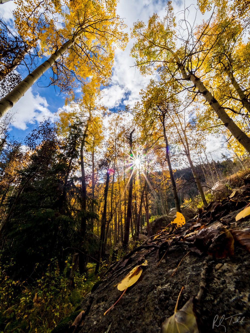Fall Colors-Guanella Pass-6.jpg