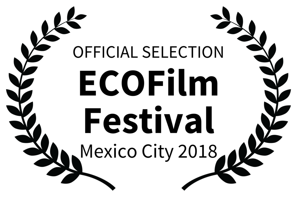 OFFICIAL SELECTION - ECOFilm Festival - Mexico City 2018.png