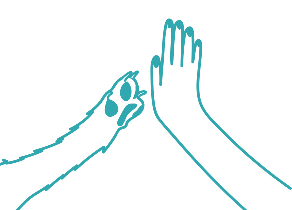 15. when a dog initiates a high five
