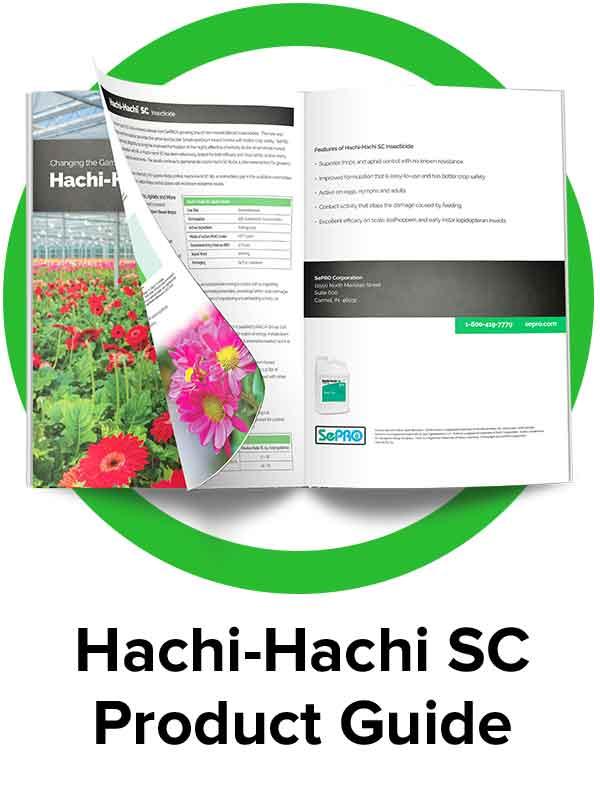hachi-hachi-guide-icon.jpg