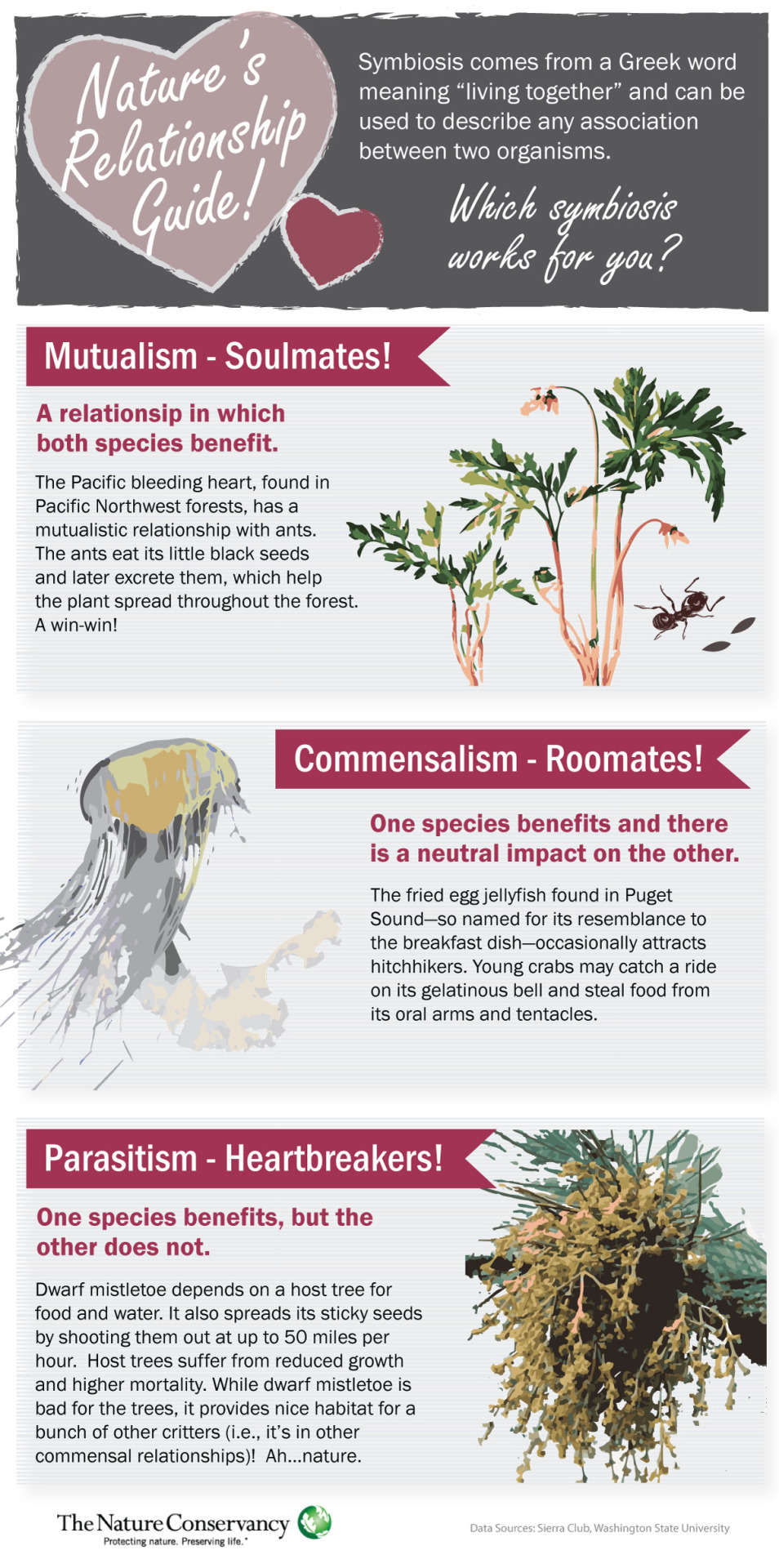 Nature & Valentines   In honor of the upcoming holiday, we took a look at symbiosis in nature through our Nature Relationship Guide!