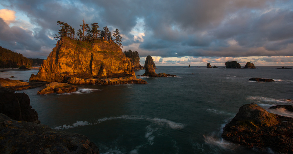 "Enamored By The Coast    By Wendy Marsh, Director of Donor Communication & Stewardship   The thing I love the most about tide pools is that they offer a window into the ocean by revealing the fascinating beauty below the surface.   Last week I visited Second Beach, an incredible wilderness coastline in Olympic National Park. The Quileute Needles—jagged, dagger-shaped rock formations—are visible jutting out of the sea. Cliffs line the shoreline and, during low tide, reveal shallow tide pools. I was excited about this trip since I was traveling with members of our conservation and science staff. They are intimately knowledgeable and passionate about our work; seeing nature through their eyes is an incredibly rich experience.   However, my enthusiasm for exploring the tide pools had turned to trepidation after our meeting with NOAA earlier that morning in Port Angeles. I had asked her if she had any insight into the tragically massive die-off of starfish along the Pacific coasts.   Starfish have always seemed indestructible to me; if they lose a leg, it grows back. If you cut one in half, it can regenerate itself into two more individual stars.   But now there is an alarming wasting illness spreading through the starfish population. Similar to a flesh-eating disease, it's a gruesome way to die. White lesions on the starfish's limbs appear. Then the tissue surrounding the lesion starts to decay. The body fragments and ""melts"", basically turning to goo.   Scientists don't know what's causing the disease or its spread, though it's also possible that the disease is a result of a virus. But they're not ruling out ocean acidification, lower oxygen levels or warming waters.   Why does this matter? Despite the fact that starfish are fascinating creatures that come in a variety of colors and shapes, they are a ""keystone species"" – meaning that, like in any stone building, if you remove the keystone, things start to crumble. Other species depend on them. Their extinction would have an extraordinarily significant effect on the biodiversity of their community.   The next day we surveyed the forests and land along the Hoh River. Our work here in the Olympics revolves around restoring salmon. Salmon are another keystone species and a symbol for building support for the conservation of the coastal ecosystems of the Pacific Northwest.   For me, here was an example of how environmental changes on one area create a domino effect on other parts of related ecosystems – in this case, specifically between the Hoh River and the Pacific Ocean.   Salmon make the case since they are also an indicator species. Because their lifecycle takes them from mountain headwaters, to the ocean, and back again, they are a litmus test of sorts for the overall health of our region. When they are healthy, so are our soil, our water, and our food supply. So we need to behave like salmon and bring together forests, rivers, estuaries and the ocean.   Unfortunately, most of the pressing threats to our natural world are anthropogenic (caused by humans): over fishing, land clearing, runoff pollution, removal of old growth forest, urban runoff, water and sediment contamination with toxic substances. The cumulative impact of several stressors has reduced the resiliency of many ecosystems. But we can and are changing all that .   Just as the land and the sea meet at tide pools, TNC's work is to help these natural assets adjust, adapt, and become resilient in the challenging changing of the tides every day.   I hope you're a member – I can tell you first hand that there is nothing like the feeling that comes from creating change that is better for the environment and, therefore, ourselves."