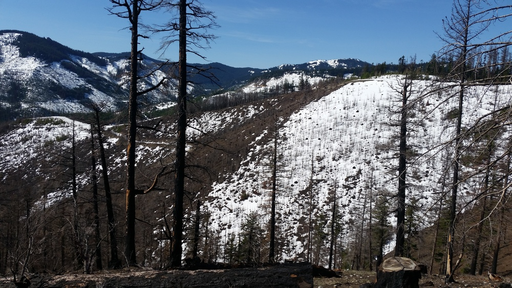 S Cle Elum Ridge_area burned in 2014.jpg
