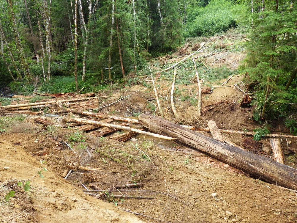 After the bridge was deconstructed, the timbers were used to create log jams and foster stream structure.