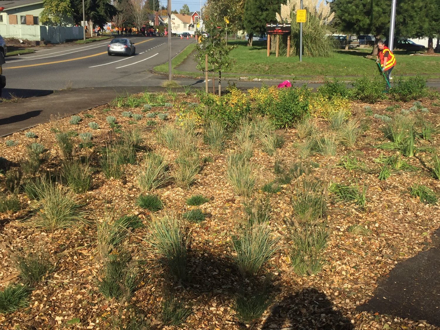 Making a Difference One Rain Garden at a Time — The Nature ...