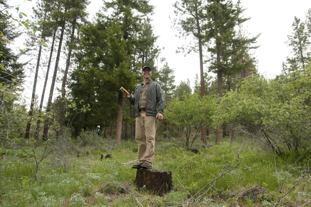 Reese Lolley, director of forest restoration, near Cle Elum. Photo by Hannah Letinich.
