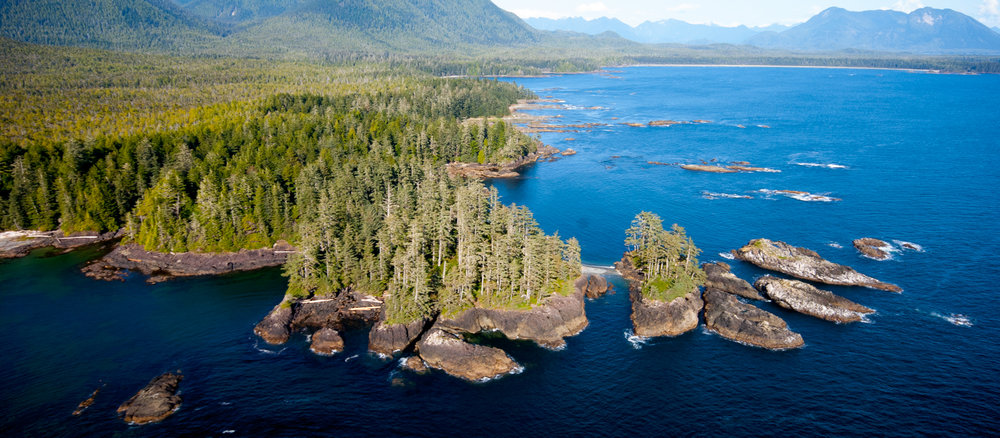 Along British Columbia's southern coast in Clayoquot Sound. Photo by Bryan Evans.