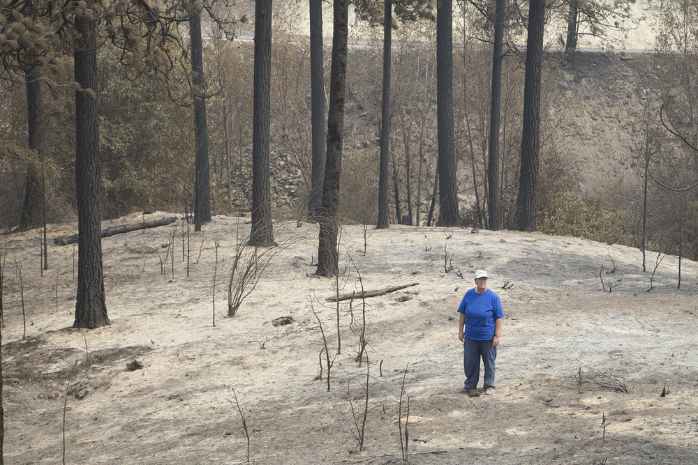 Cindy Aston-Coonfield in burned ponderosa pine stand on family property burned in Reach Fire.  Antoine Creek north of Chelan in Okanogan County. Photo by John Marshall.