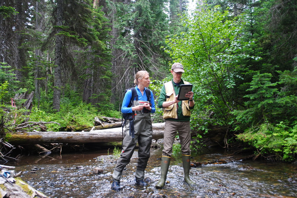 Emily Howe, Aquatic Ecologist, and Ryan Haugo, Senior Forest Ecologist, conduct stream-temperature monitoring in the Central Cascades. Photo by Zoe van Duivenbode / TNC.
